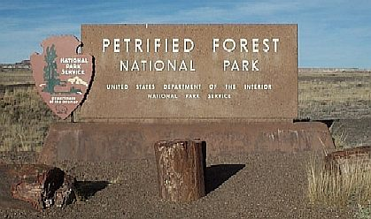 [Petrified Forest Natl Park]